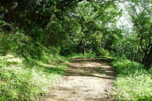鎌倉アルプスの道