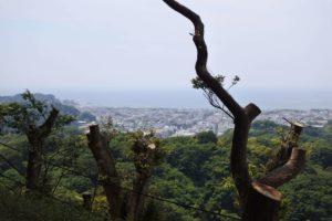 鎌倉アルプスからの景色