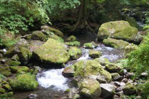 大岳鍾乳洞までの道ある川