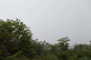 大岳山山頂からの景色