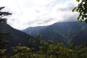 鋸山からの下山