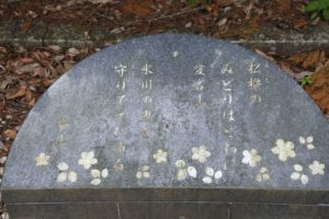 愛宕神社の裏