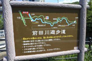 大楠山への道