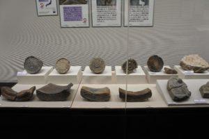 新発見考古速報展示