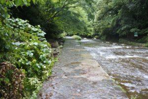 粟又の滝の道
