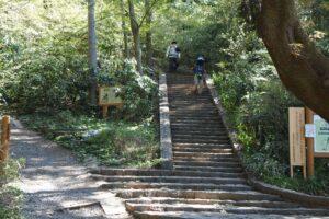 高尾山への道