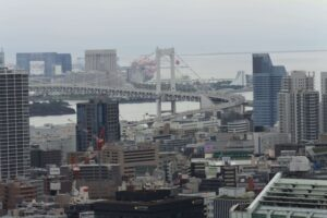 東京タワーからの景色